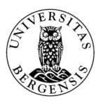 University of Bergen Norway Logo