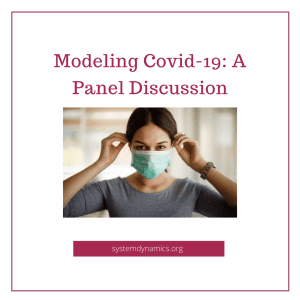 Modeling Covid-19:  A Panel Discussion